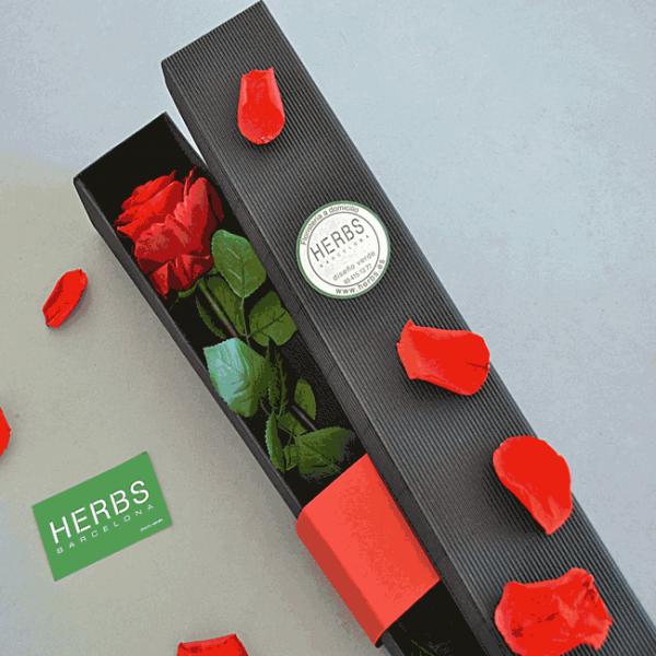 box-rose-rouge