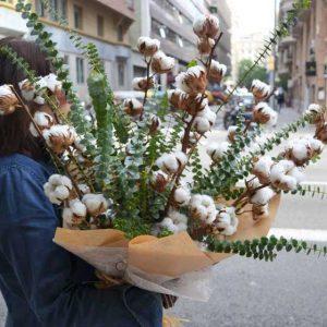 flores-algodon-barcelona