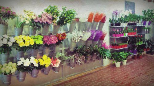 floristeria-a-domicilio