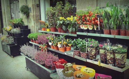 floristeria-barcelona-flores