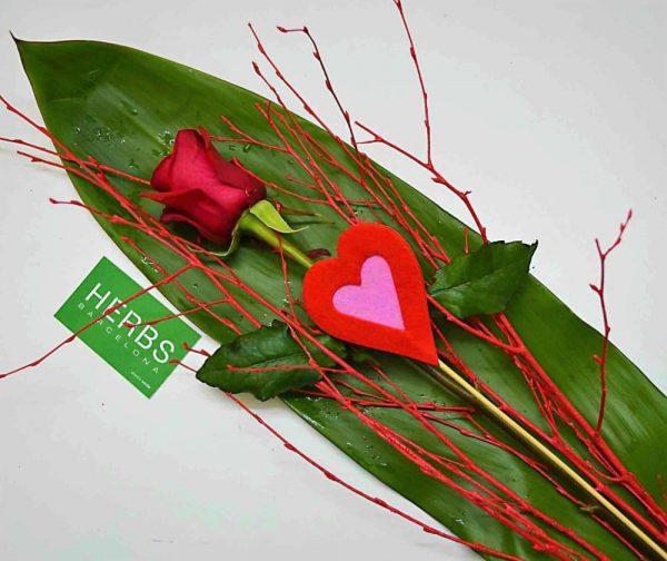 rosa-roja-san-valentin