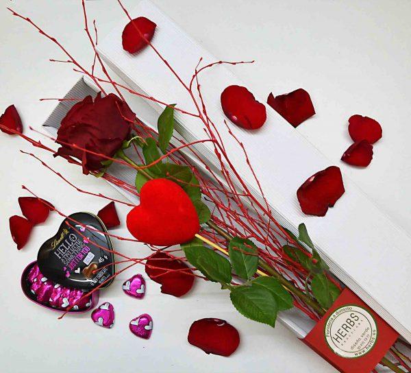 rosas-de-san-valentin